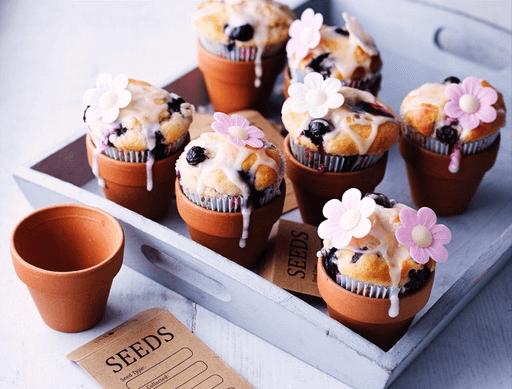 Flowerpot Blueberry Muffins